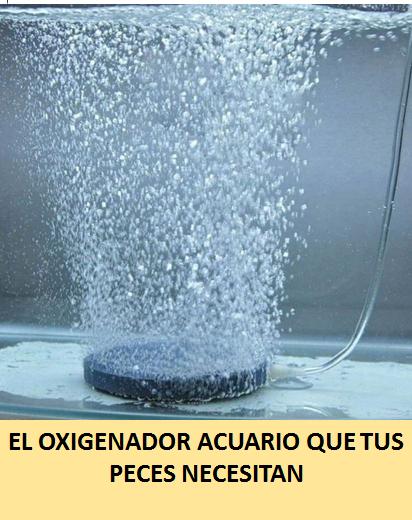 oxigenador acuario