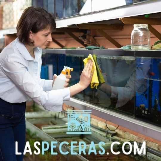 limpiar un acuario