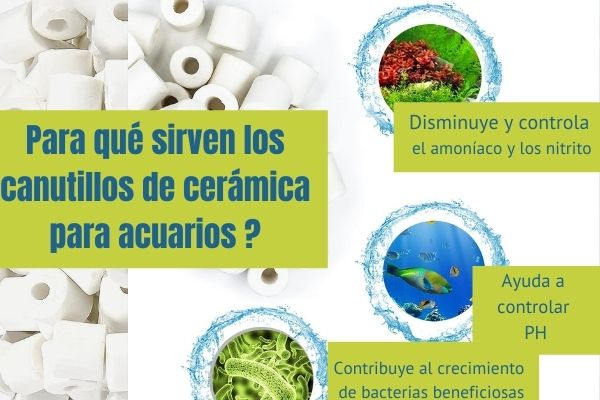 para qué sirven los los canutillos de cerámica para acuarios ? 3 beneficios